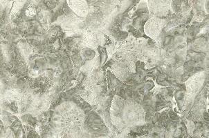 意大利海洋灰