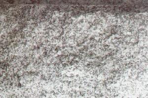 金边蘑菇石