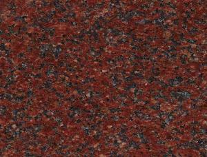 印度红小花