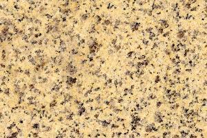 黄金麻中黄
