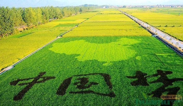 """""""绿色治理""""中国方案得到世界认可"""