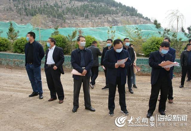 新泰政企团赴东平学习绿色矿山建设