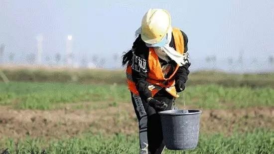 定了!2025年内蒙古全部矿山要达到绿色矿山标准!
