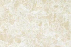 白玫瑰米黄