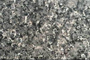 新矿冰花兰(贝壳灰)