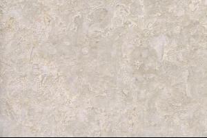 诺娃米黄(珍珠花)