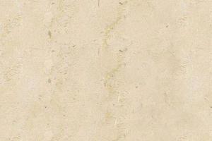 埃及白金花