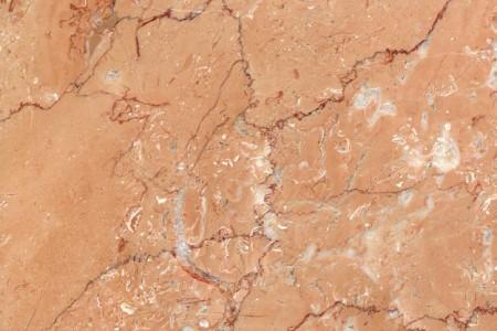 新矿橙皮红(戴安娜玫瑰)
