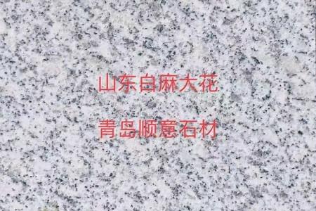 山东白麻(大花)