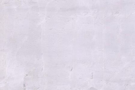 格陵兰岛白