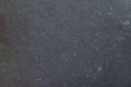 中国黑(宜宾黑、蒙古黑)火烧面