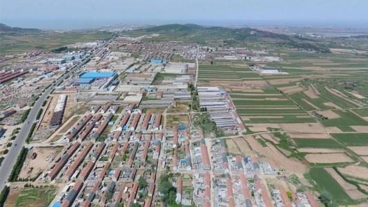 荣成市石岛红产区